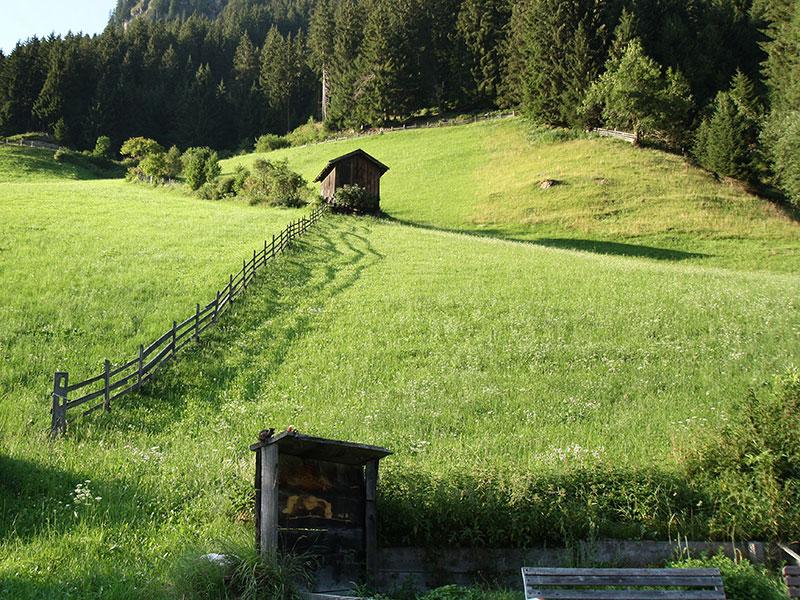 Wiese vor dem Alpengasthof Bärenbad